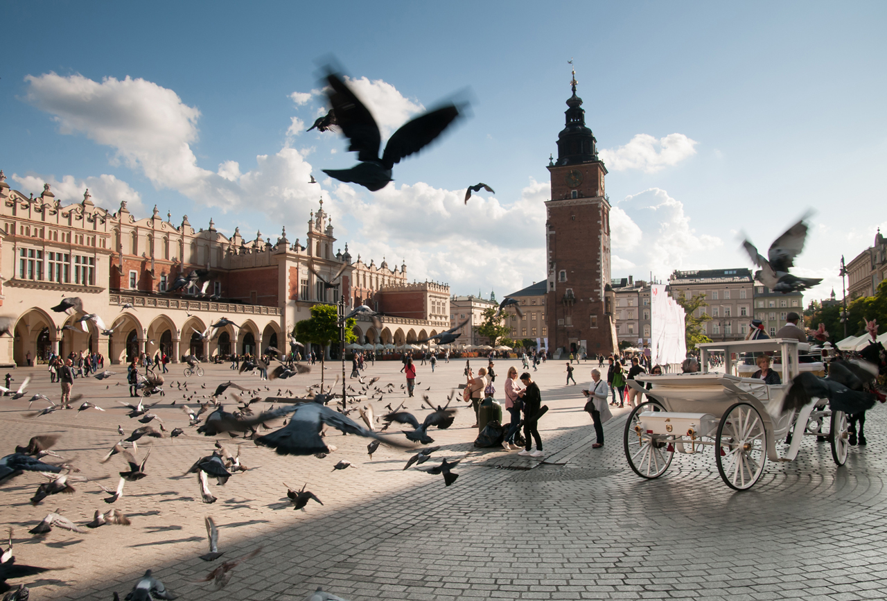 Krakow Main Market Square Town hall tower and Cloth hall pigeons